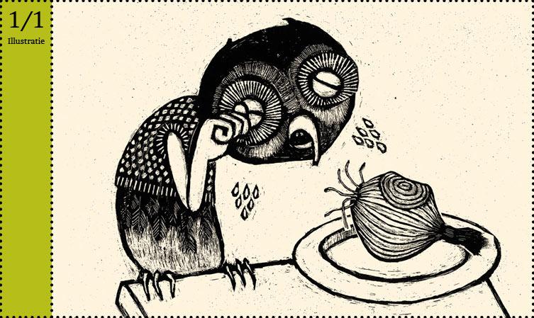 Fleur van der Weel krastechniek uil kinderboek